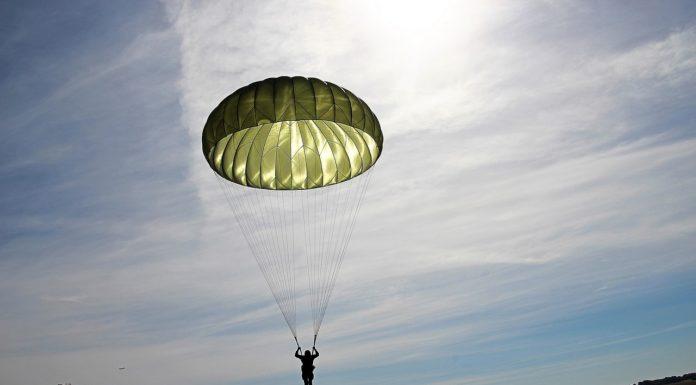 Parachutist Parachute Skydiving  - GuentherDillingen / Pixabay
