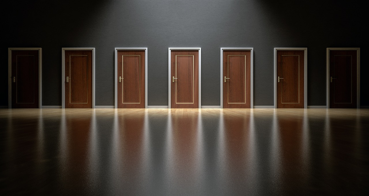 Doors Choices Choose Open Decision  - qimono / Pixabay
